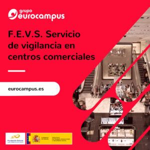 curso de vigilancia en centros comerciales