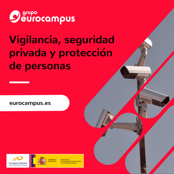 curso de vigilancia, seguridad privada y proteccion de personas